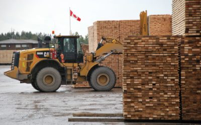 2020 Global Lumber Markets Outlook