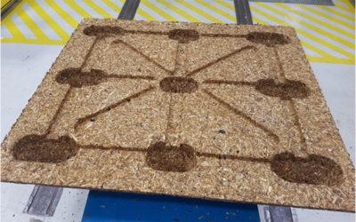 Des palettes moulées fabriquées avec du bois de CRD