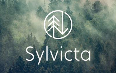 Sylvicta: un papier barrière translucide révolutionnaire