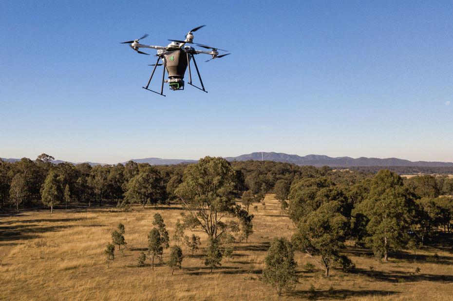 Combiner IA et drones pour lutter contre la déforestation