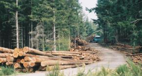 DiaLOG Tool : un outil pour la forêt privée
