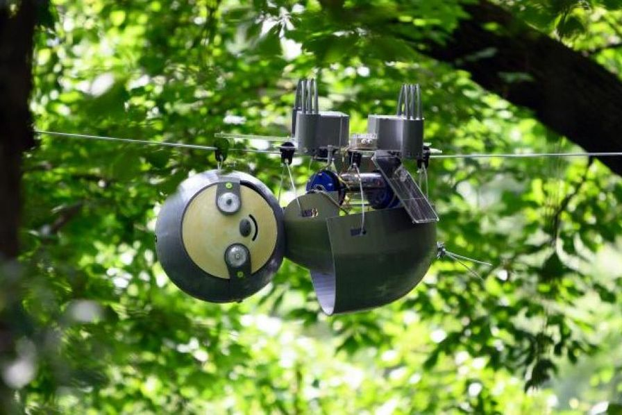 L'éloge de la lenteur en robotique